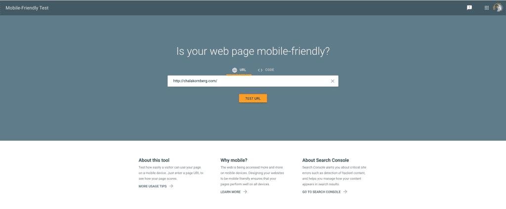 Mobile-Friendly Test Tool จาก Google